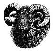 North Ronaldsay Sheep Fellowship